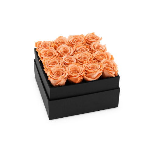 Infinite Plaza Roses - London Delivery - OnlyRoses