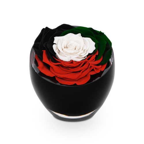 Spirit of the Union | The InfiniteRose in UAE Colours