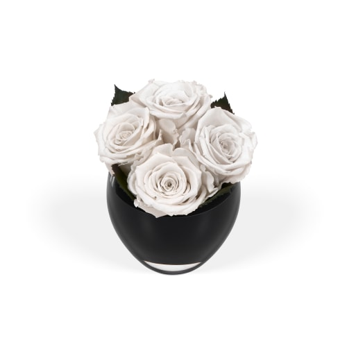 Valentine's Day Infinite Rose Quartet - OnlyRoses - The World's Finest Roses
