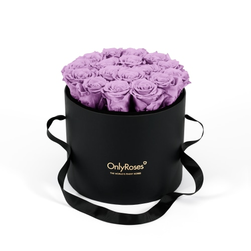 Infinite Rose Waldorf - Lilac Luxuries - The World's Finest Roses