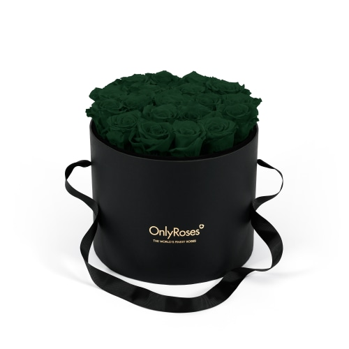 Infinite Rose Waldorf - Green with Envy - OnlyRoses