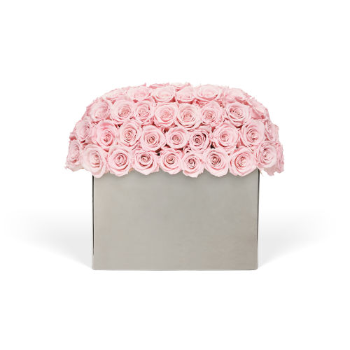 Infinite Rose Modernist - Infinite Luxury Collection - OnlyRoses