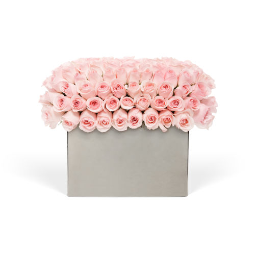 Modernist Roses - Delivered in Doha - OnlyRoses