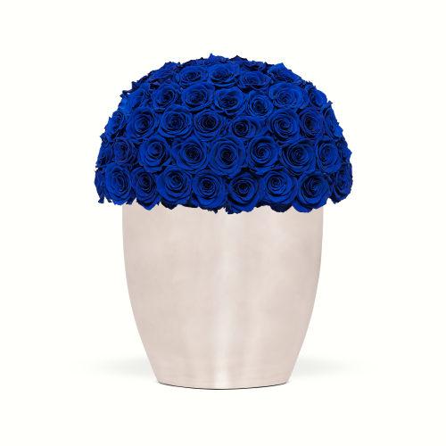 Infinite Rose Uptown - OnlyRoses - The World's Finest Roses