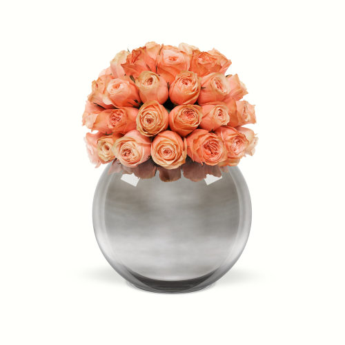 Classic Rose Palacio Dome - The Classic Luxury Collection - OnlyRoses
