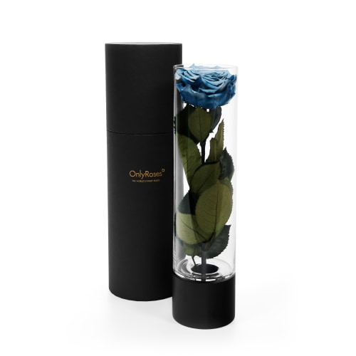 Infinite Rose Ebony - OnlyRoses - Roses delivered Doha