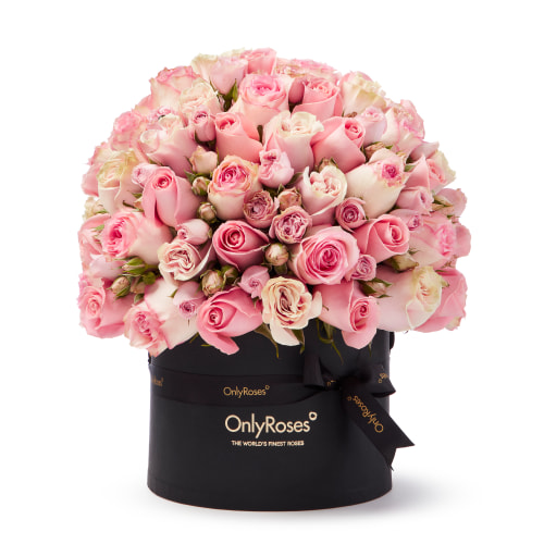 Classic Rose Verano - OnlyRoses - The World's Finest Roses