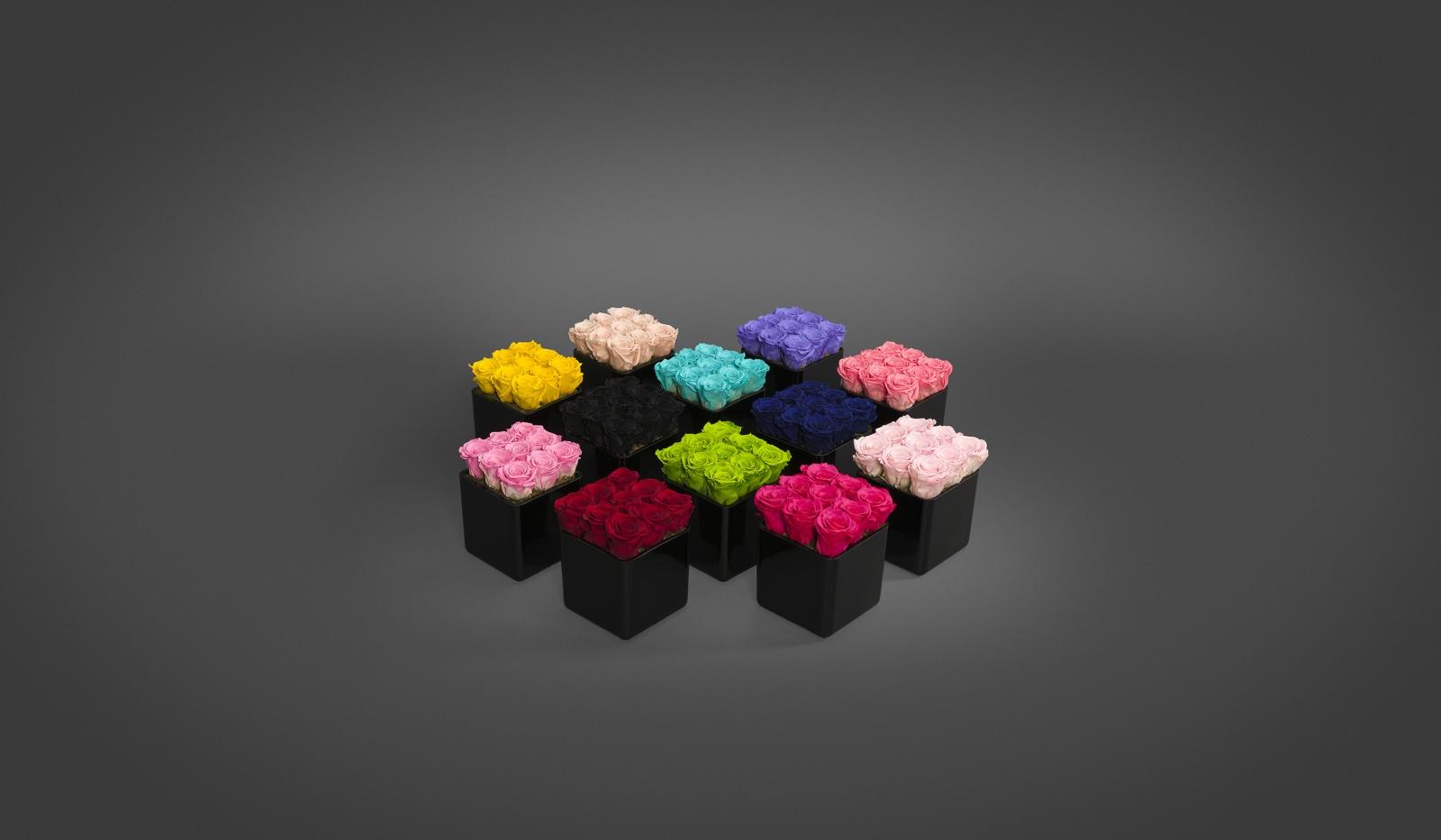 The InfiniteRose Cube