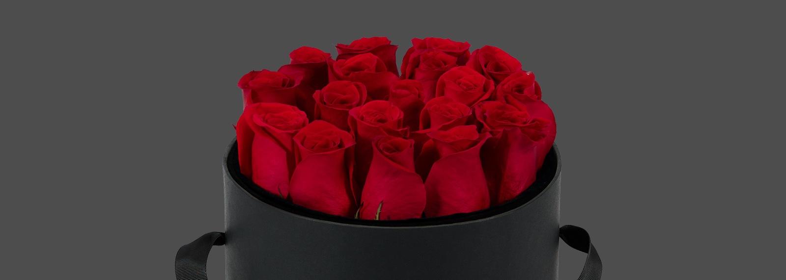 Valentine's Day Fresh Roses