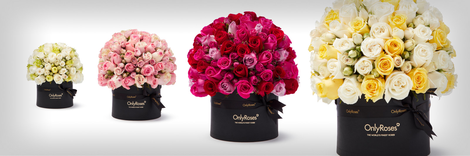 Roses Delivered Dubai Flower Delivery Service By Onlyroses