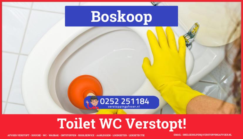 Verstopping wc ontstoppen in Boskoop