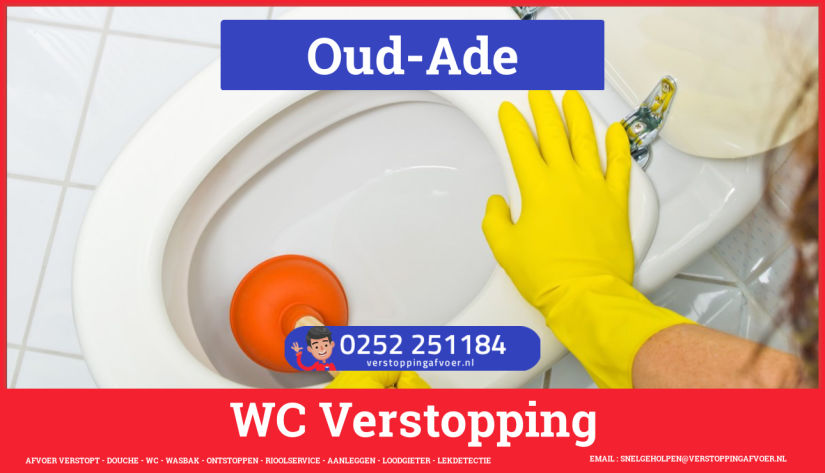 Verstopping wc ontstoppen in Oud-Ade