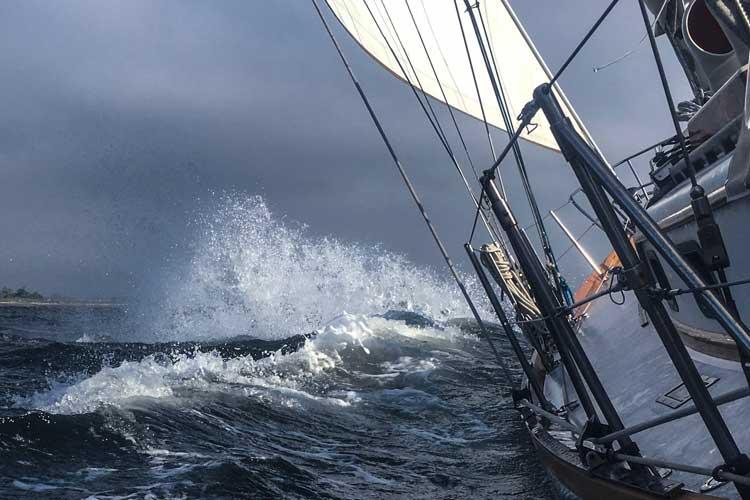 Lyra sailing in newport