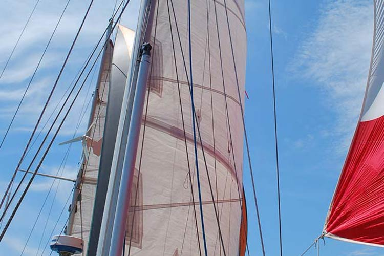 Sail with confidence