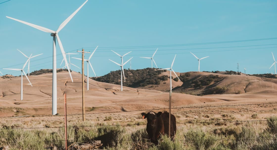 Windmils against the skyline in California countryside