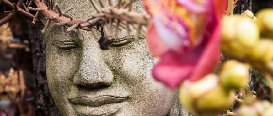 Primeras Emociones Camboyanas - Privado
