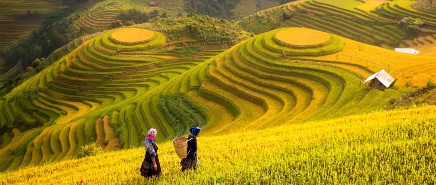 Sapa, Hanoi y Bahía de Halong - Privado