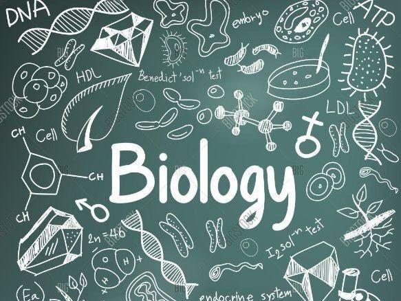 Biology Mocks