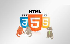 HTML & CSS & JS