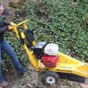 Step 4: Stump Grinding