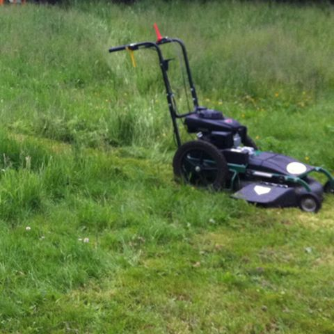 1459100908902_high-grass-mowing.jpg
