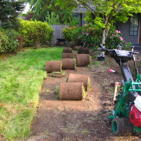 How To Install A New Lawn Using Sod