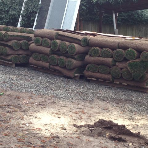 Update - House Flippers Install Sod - Have New Yard 1458007301850_pallets of sod ready for install.JPG