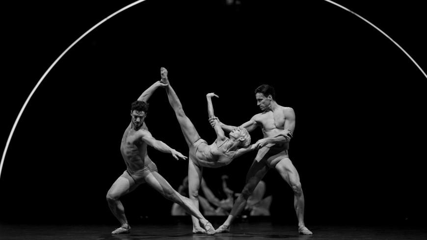 « Tree of Codes », Palais Garnier, 2017