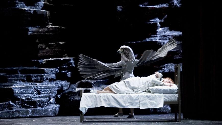 Die Frau ohne Schatten au Royal Opera House de Londres, 2013