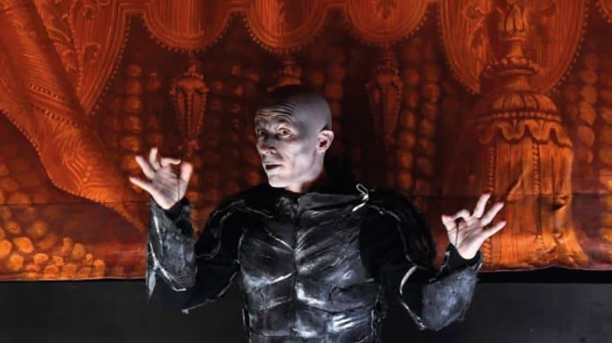 Don Pasquale - spectacle adapté en LSF par Katia Abbou et Vincent Bexiga
