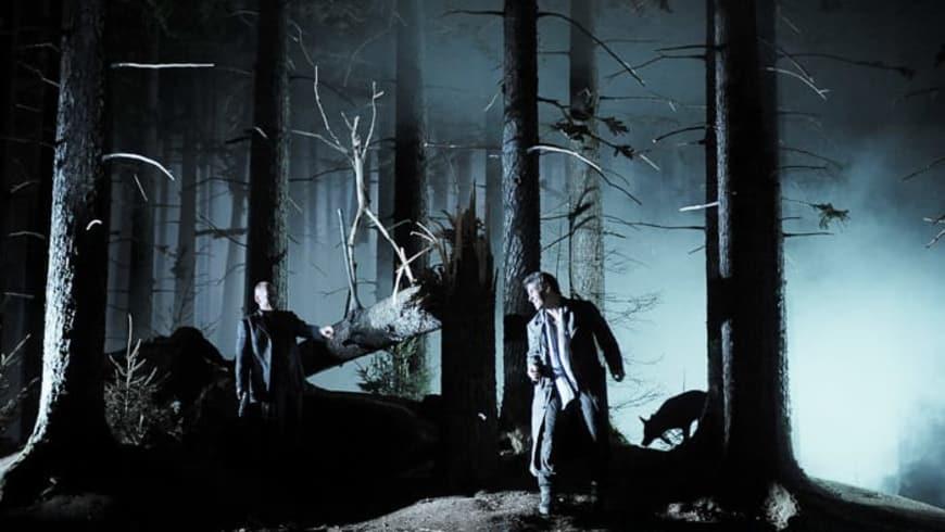 Don Giovanni au Festival de Salzbourg, 2009