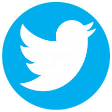 Twitter Poll – How to Run a Poll on Twitter