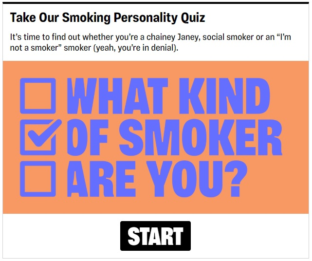 example of a branded quiz
