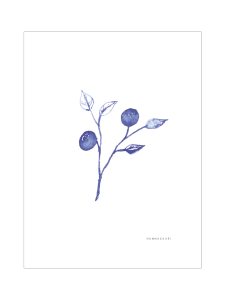 HANNASAARI - Mustikka juliste 30x40 - null | Stockmann