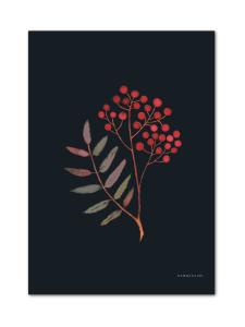 HANNASAARI - Pihlaja kortti A4 - null | Stockmann