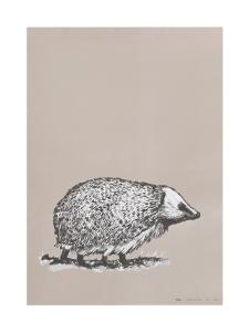 MIIKO - Siili-juliste 50x70cm - BEIGE | Stockmann