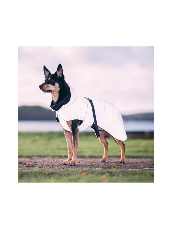 PAIKKA - Visibility Raincoat Lite Pink for Dogs - 4 | Stockmann - photo 7