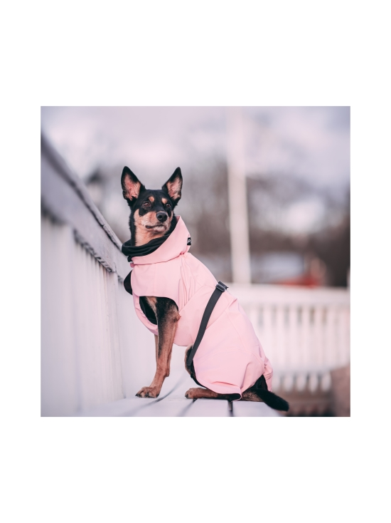 PAIKKA - Visibility Raincoat Lite Pink for Dogs - 4 | Stockmann - photo 5
