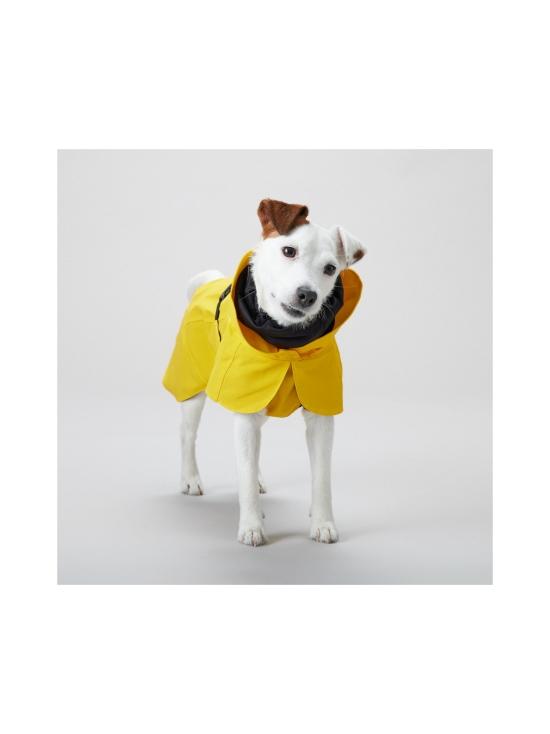PAIKKA - Visibility Raincoat Lite Yellow for Dogs - 6   Stockmann - photo 6