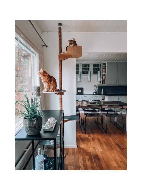 Kissapuu - Kissan Onni kiipeily- ja raapimispuu, koivu & harmaa   Stockmann - photo 10