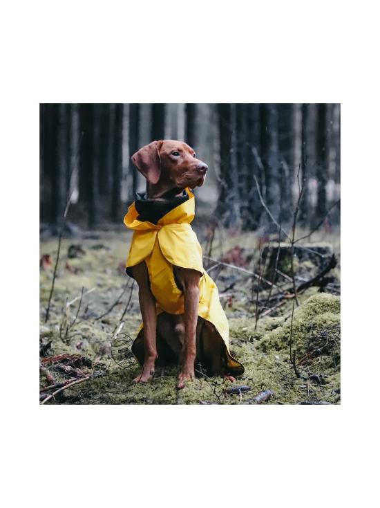 PAIKKA - Visibility Raincoat Lite Yellow for Dogs - 6   Stockmann - photo 8