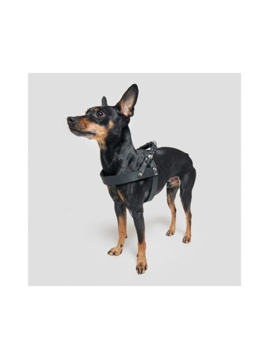Cloud 7 - Black nahkavaljaat koiralle - 10   Stockmann - photo 5