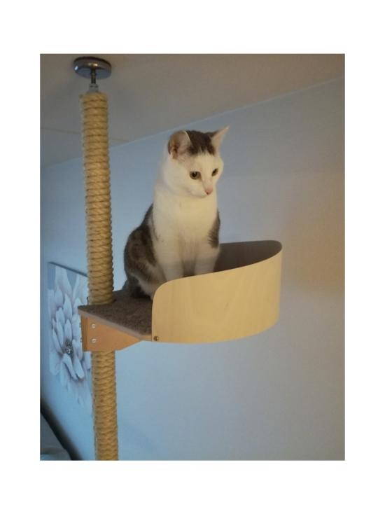 Kissapuu - Kissan Onni kiipeily- ja raapimispuu, koivu & beige   Stockmann - photo 9