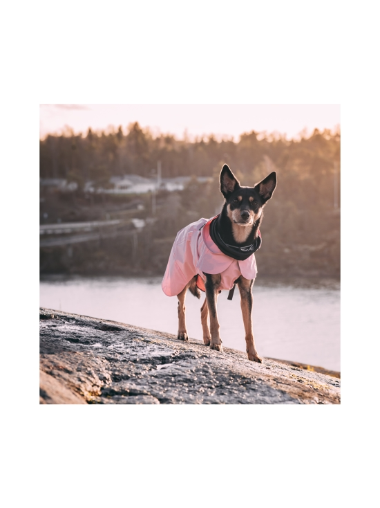 PAIKKA - Visibility Raincoat Lite Pink for Dogs - 4 | Stockmann - photo 6