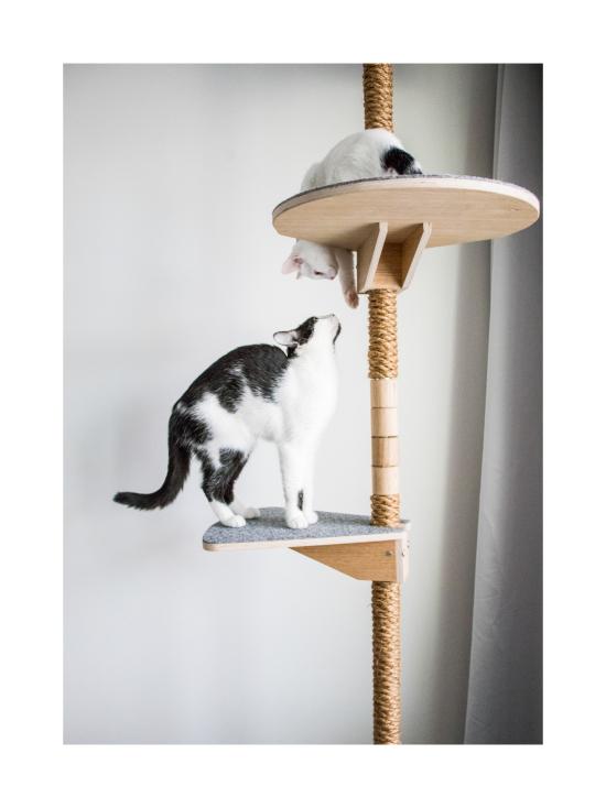 Kissapuu - Kissan Unelma kiipeily- ja raapimispuu, koivu & harmaa | Stockmann - photo 8