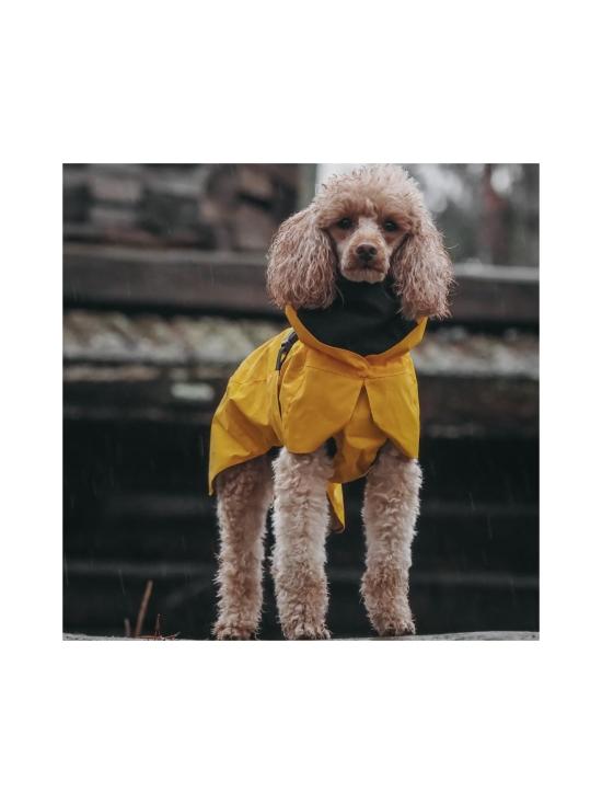 PAIKKA - Visibility Raincoat Lite Yellow for Dogs - 6   Stockmann - photo 10