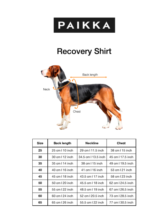 PAIKKA - Recovery Shirt - HARMAA   Stockmann - photo 2