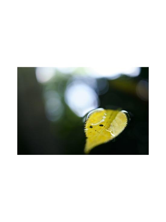 Tamron - Tamron 35mm f/2.8 DI III OSD (Sony FE) -objektiivi | Stockmann - photo 4