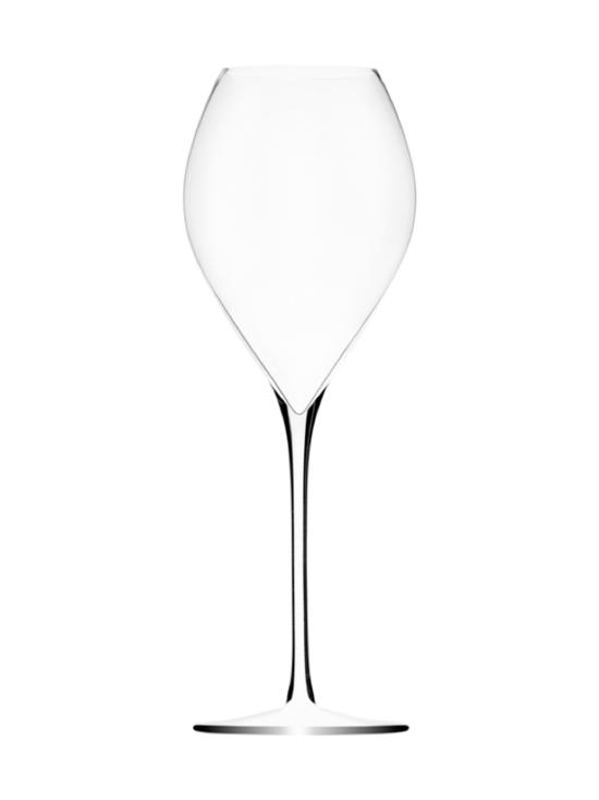 Lehmann Glass - Samppanjalasi Premium 30cl (6 kpl) - null   Stockmann - photo 1
