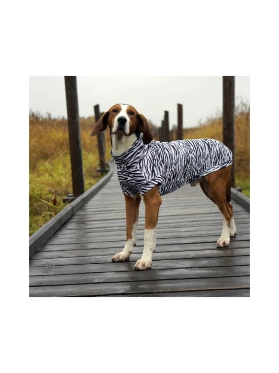 PAIKKA - UV & Bug Shirt for Dogs - ZEBRA | Stockmann - photo 5